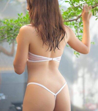 Asian_lili