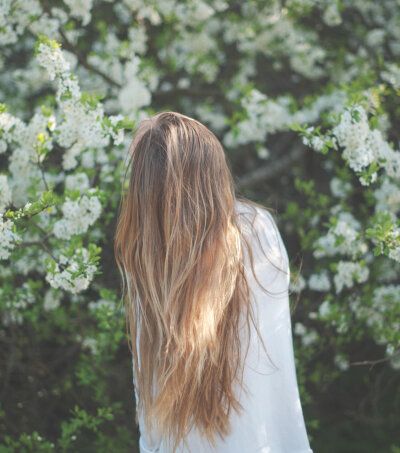 Fairy__Moon