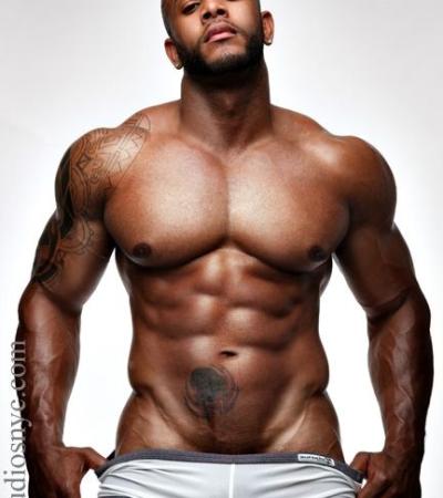 gym_model